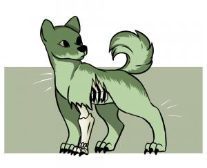 poop zombie dog