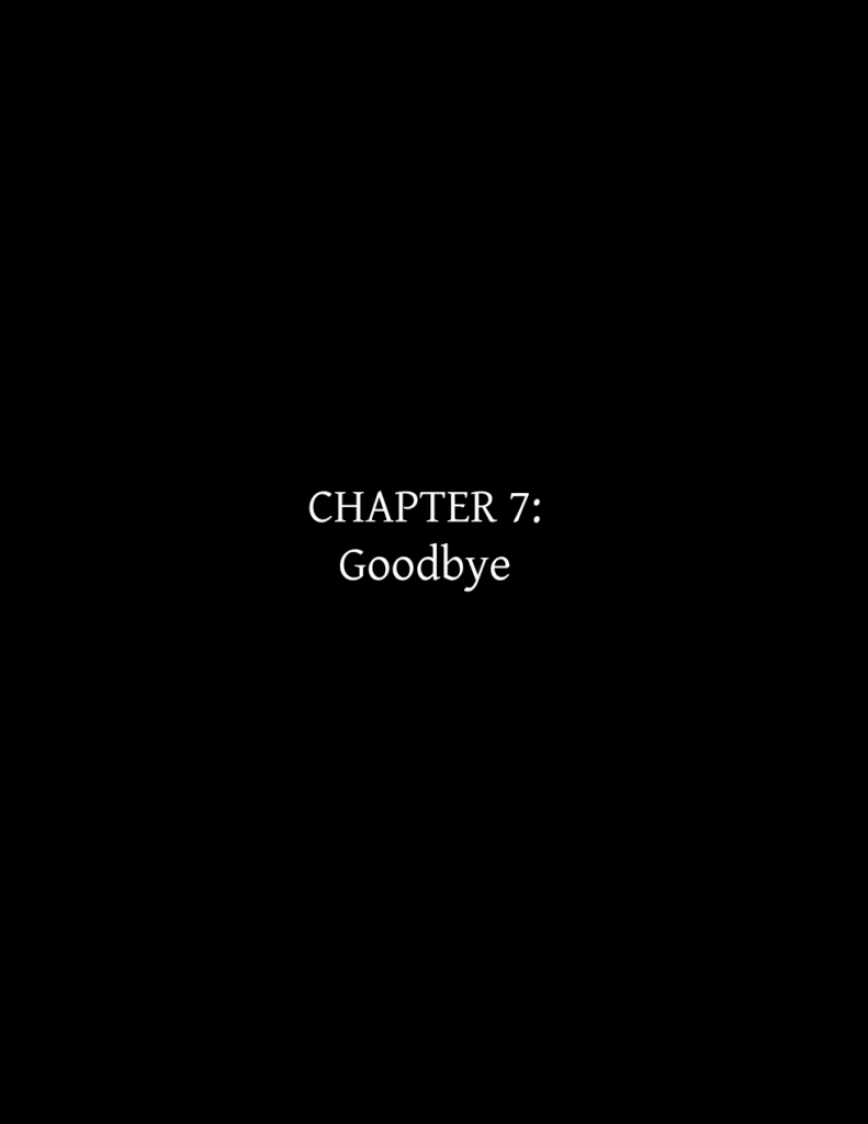 chapter7cover